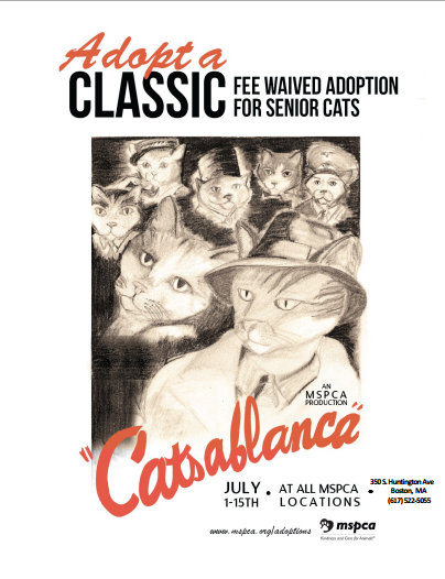 support.mspca.org site DocServer Adopt_a_Classic_ _Boston.pdf docID 12141