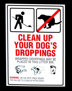 Clean Up After Your Dog!